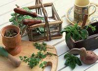 misturas-ervas-aromaticas