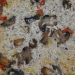 Arroz de Cogumelos com Tomilho e Linguiça